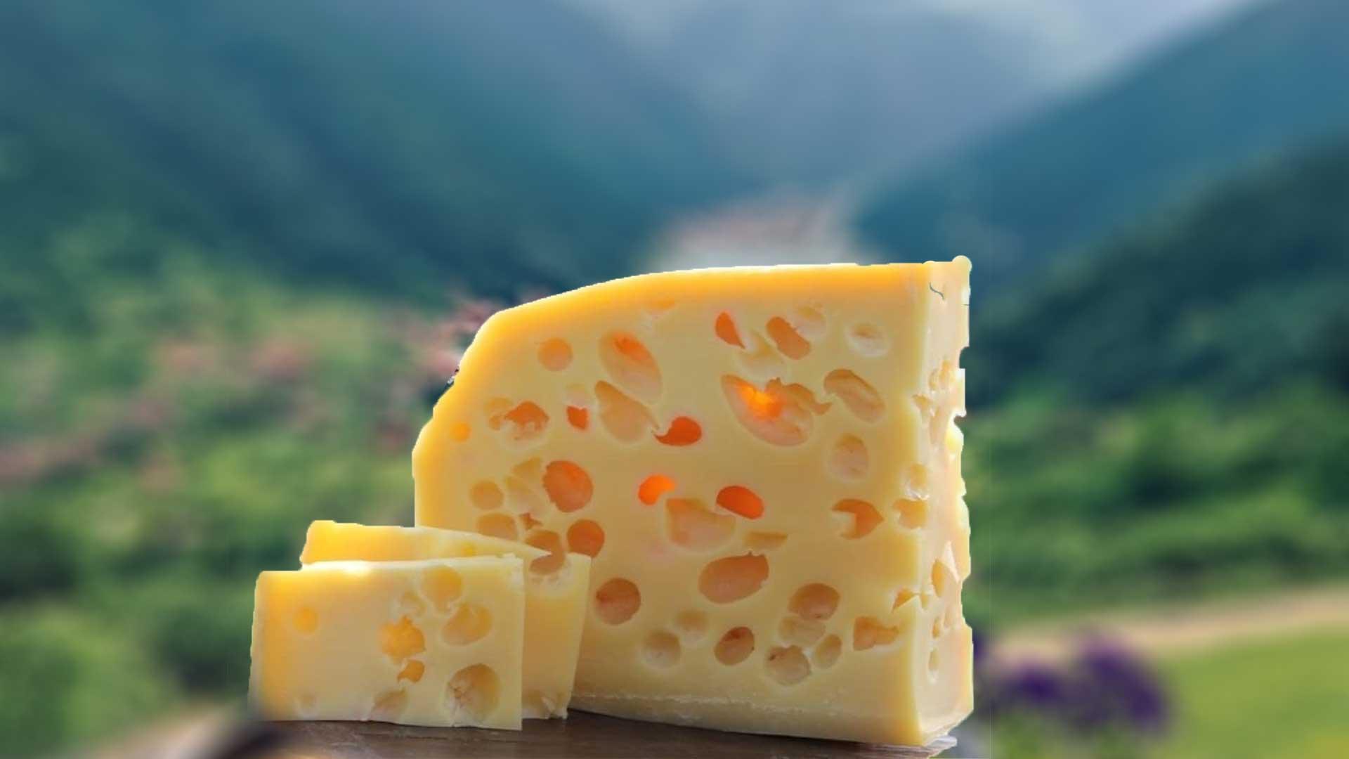 Dünyanın En Büyük Peynir İhracatı Yapan Ülkeleri?fit=thumb&w=418&h=152&q=80