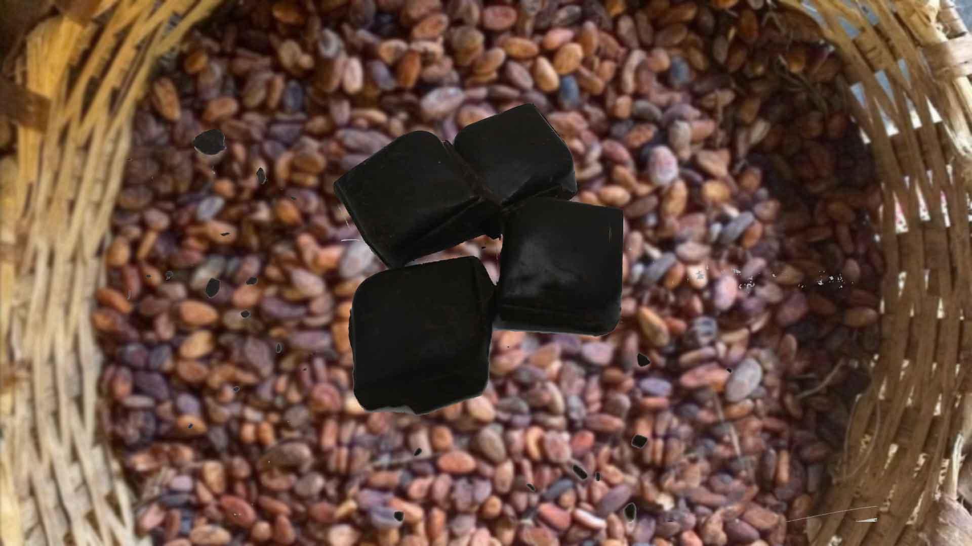 En Çok Kakao Üretimi Yapan Ülkeler