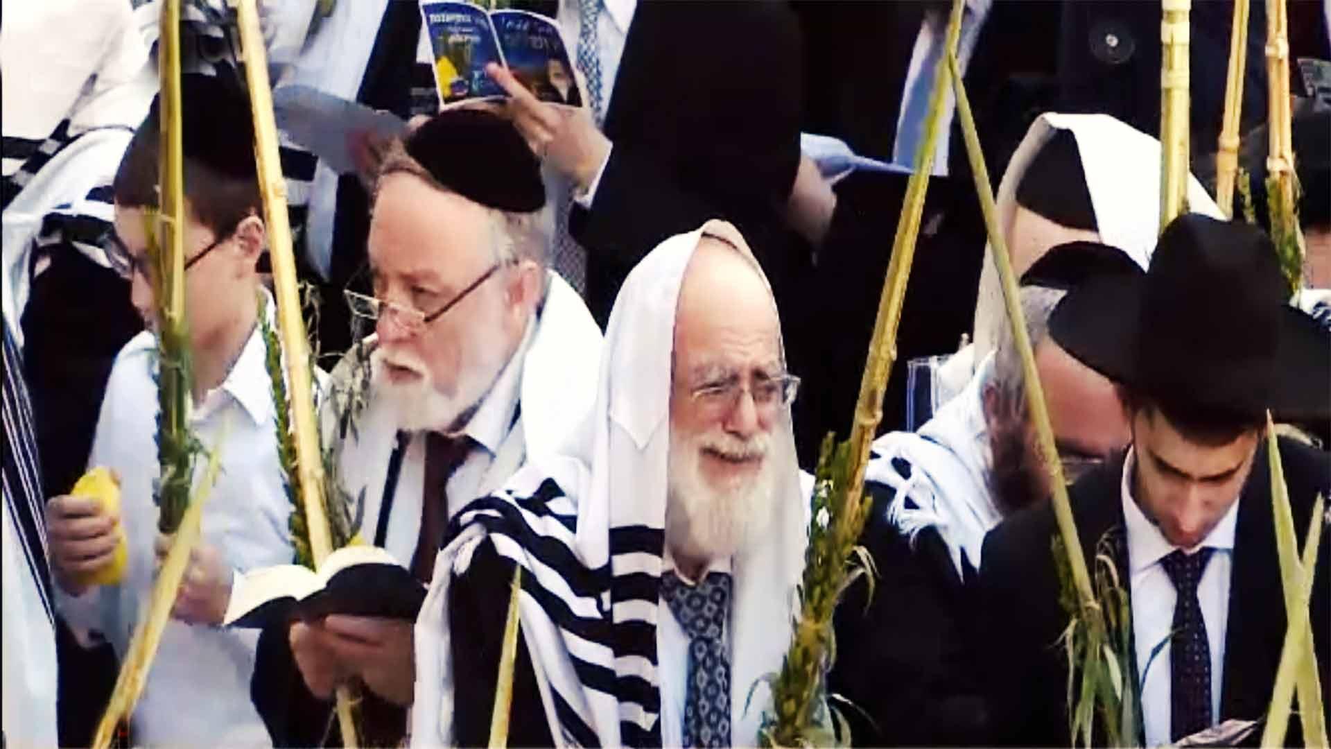 En Büyük Yahudi Nüfusuna Sahip Olan Ülkeler?fit=thumb&w=418&h=152&q=80