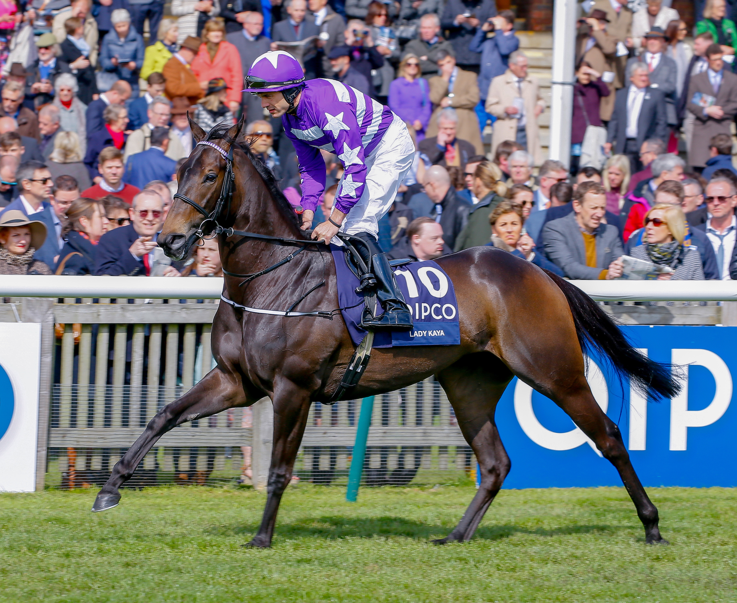 Lady Kaya finished runner-up in the 1000 Guineas and had been a leading fancy for Royal Ascot (Focusonracing)