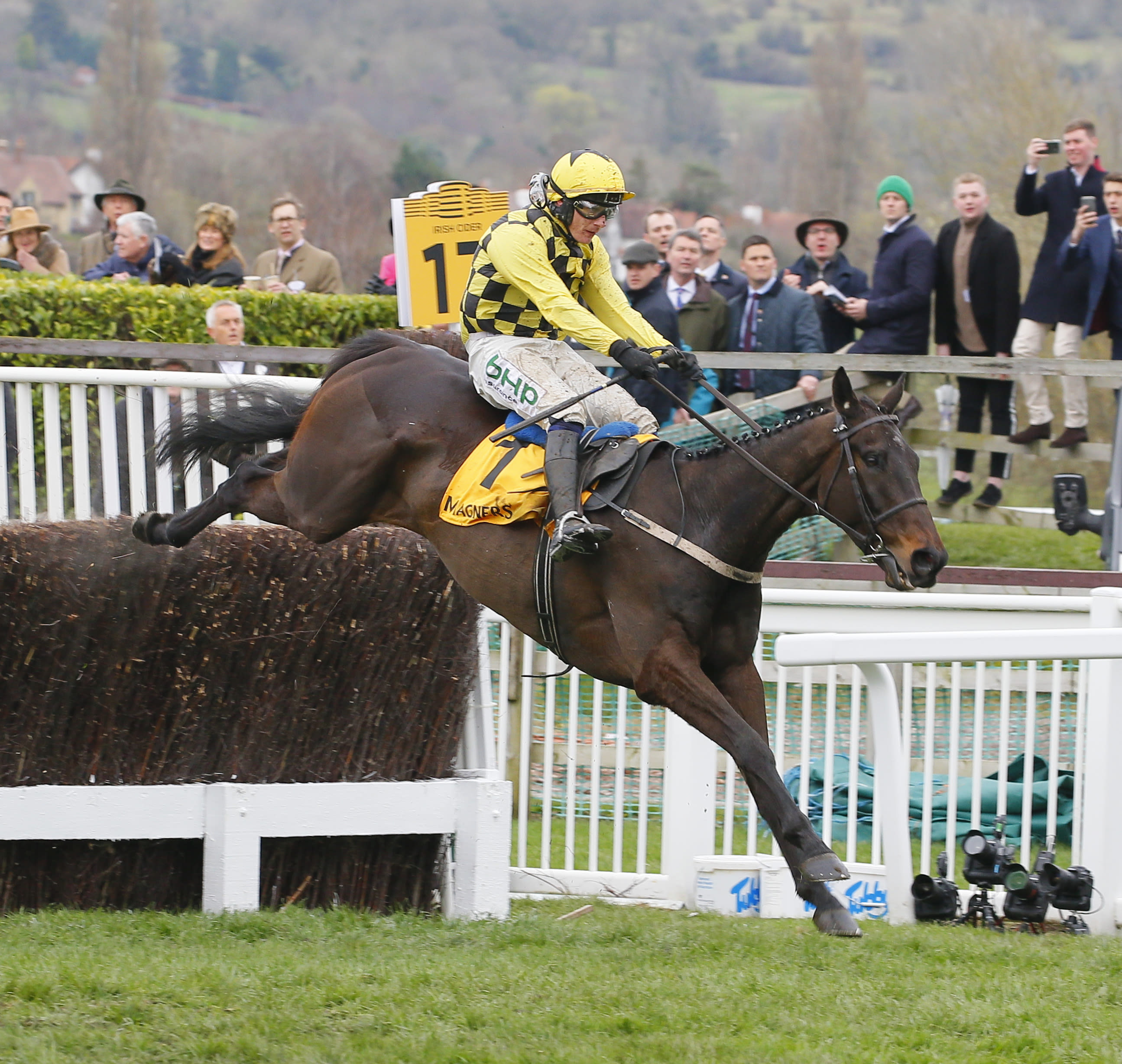 Al Boum Photo and Paul Townend have won the last two renewals of the Cheltenham Gold Cup