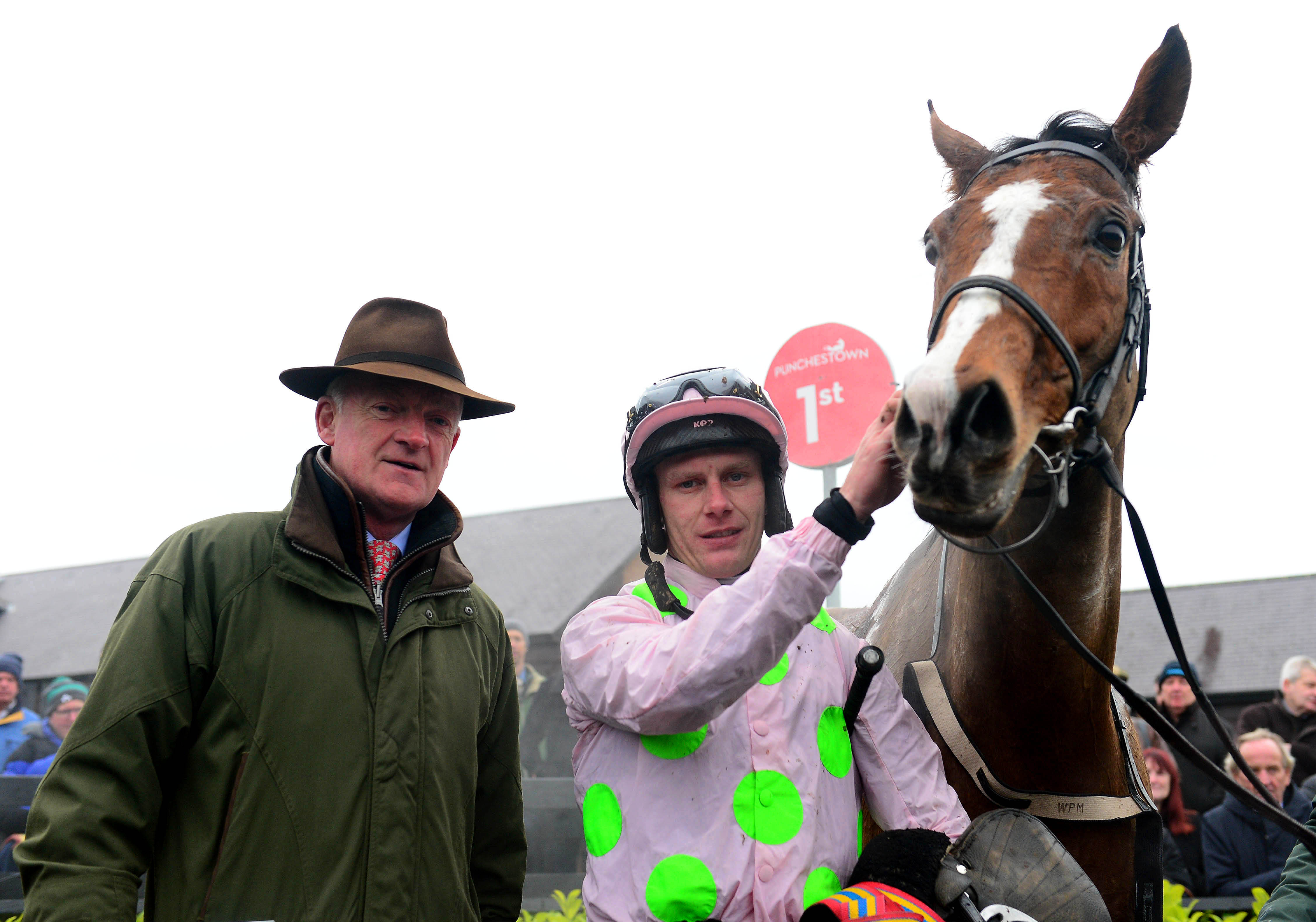 Faugheen is still going strong at 12 years of age (Focusonracing)