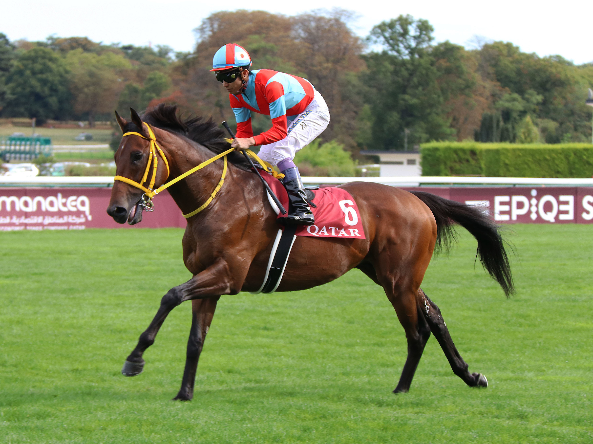 Japan's Clincher is their sole representative at ParisLongchamp on Sunday (FocusOnRacing)