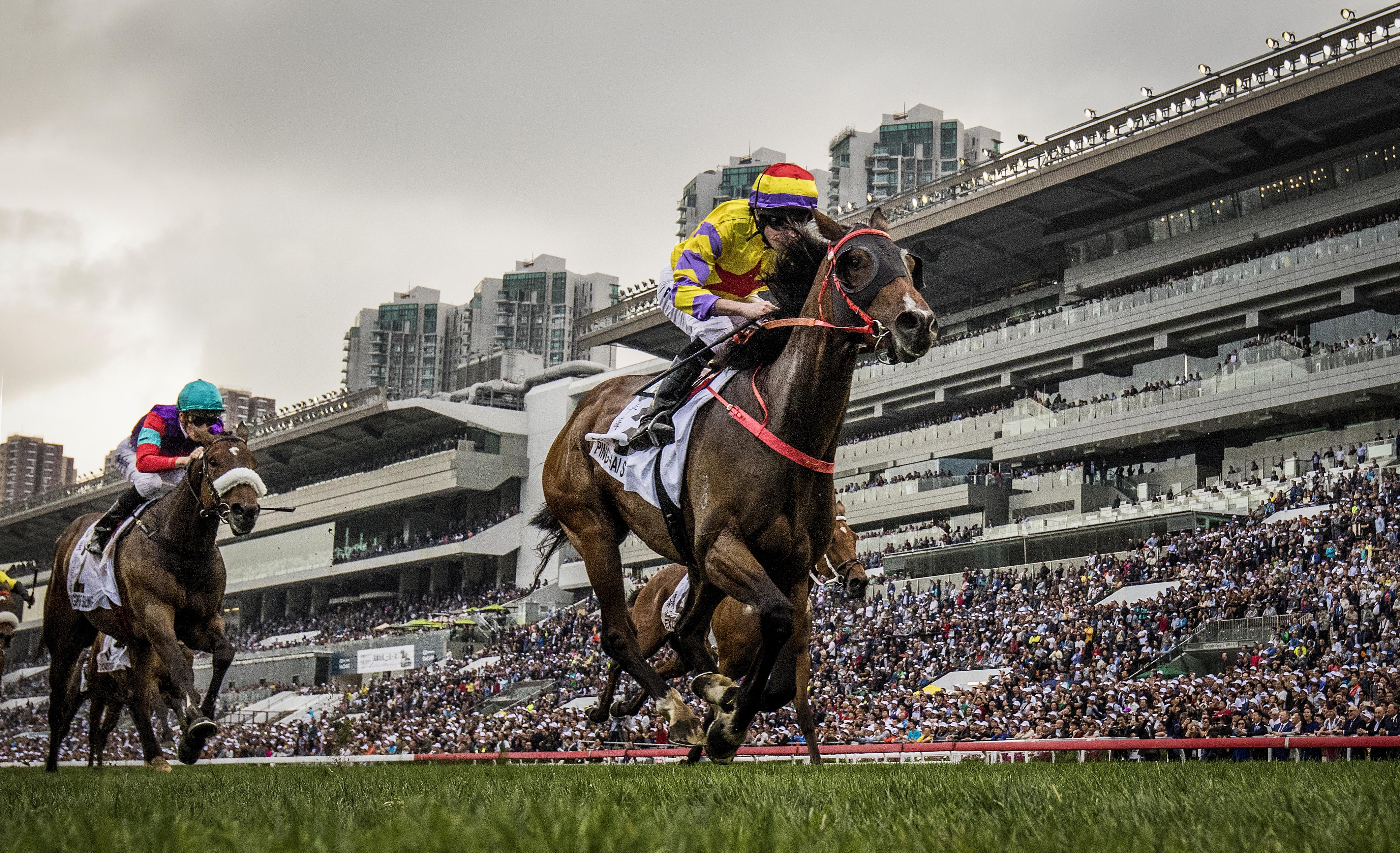 Andrew Le Jeune's guide to how to bet on Hong Kong racing