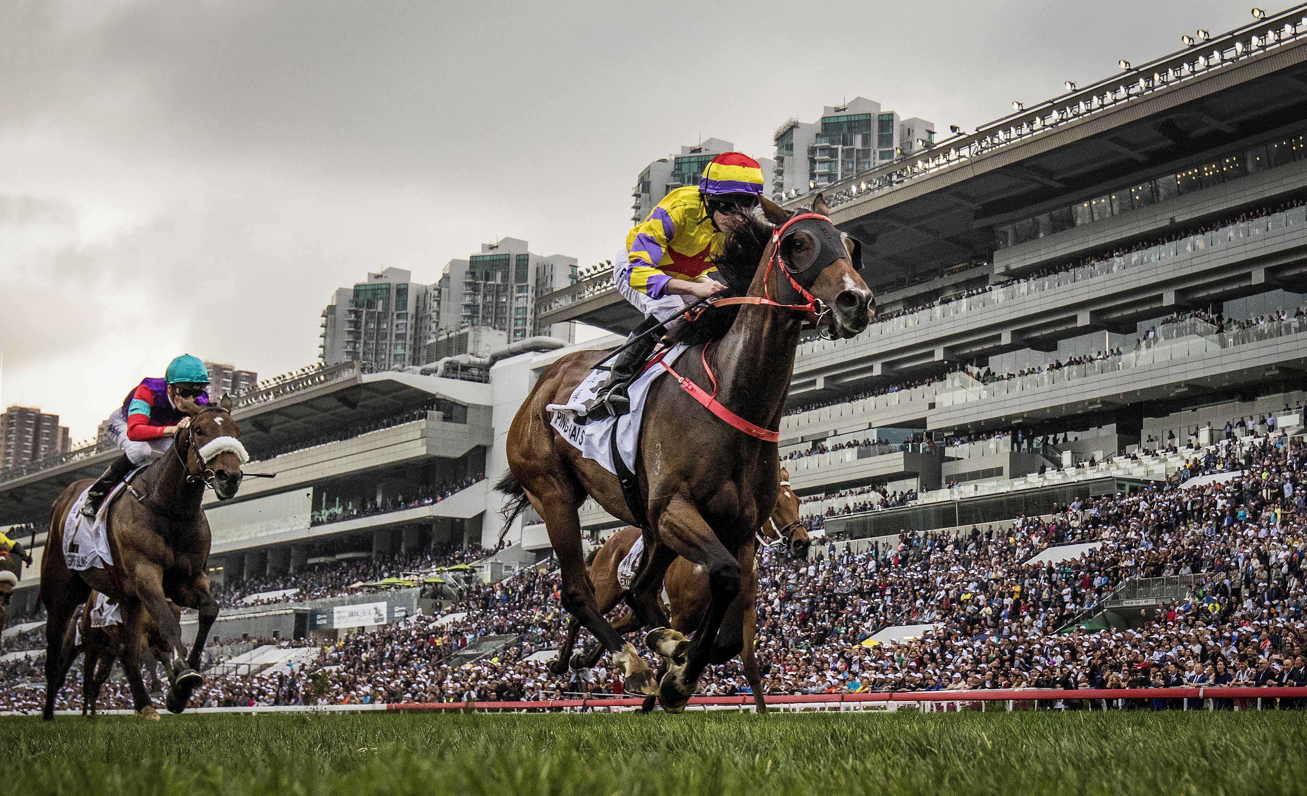 hong kong horse racing betting guide