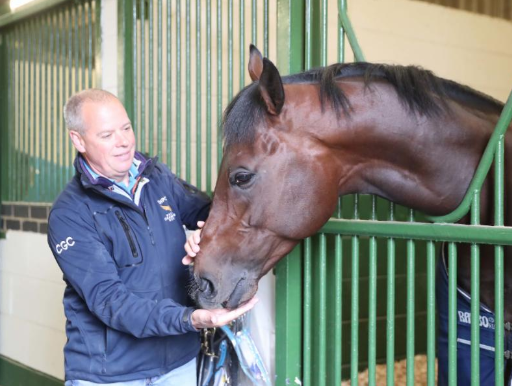 Cox admires his leading sprinter, Harry Angel, at his Lambourn yard on Tuesday
