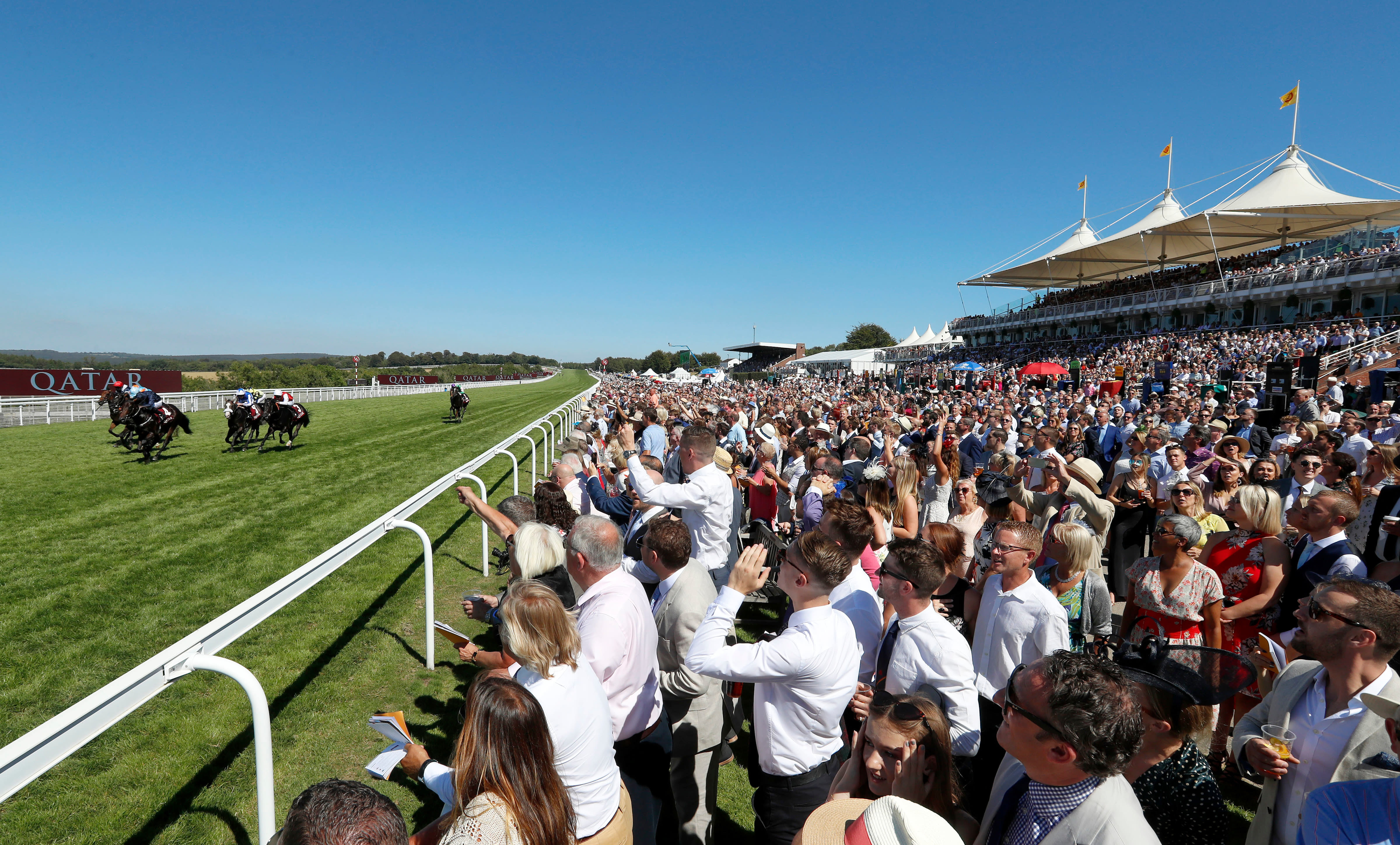 Annual members and their guests will be able to attend the final day of Glorious Goodwood