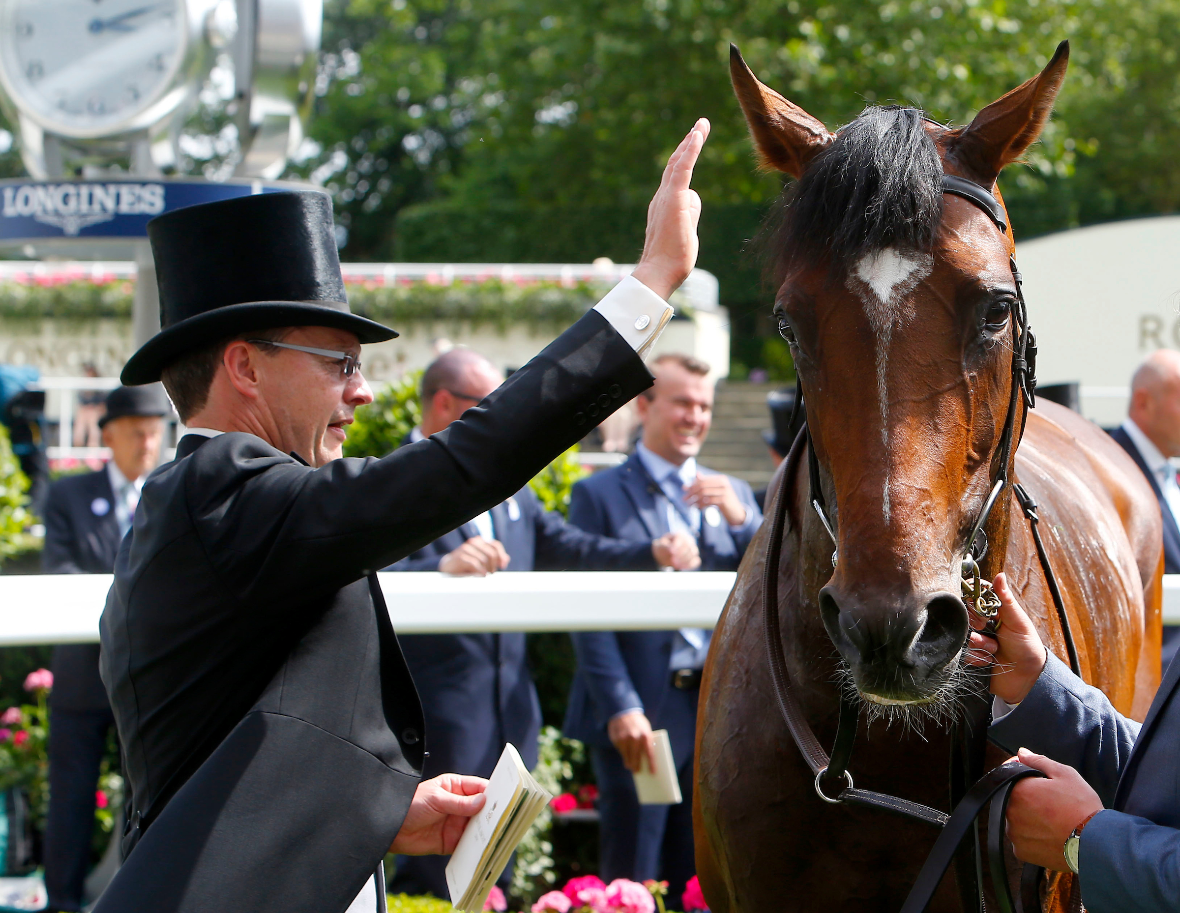 Kew Gardens showed he can handle the St Leger trip at Royal Ascot (Focusonracing)