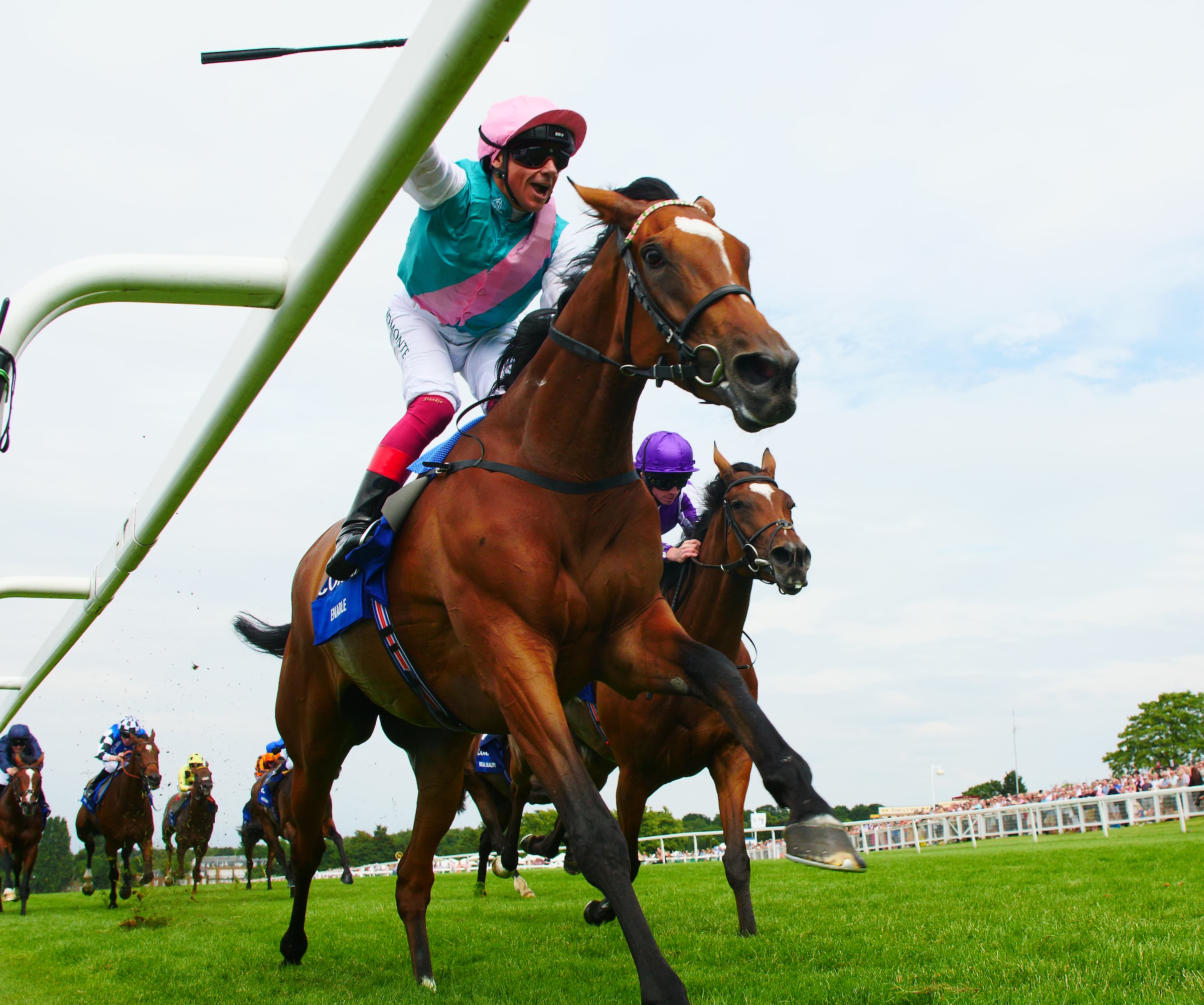 Enable strides home ahead in the Eclipse (Focusonracing)