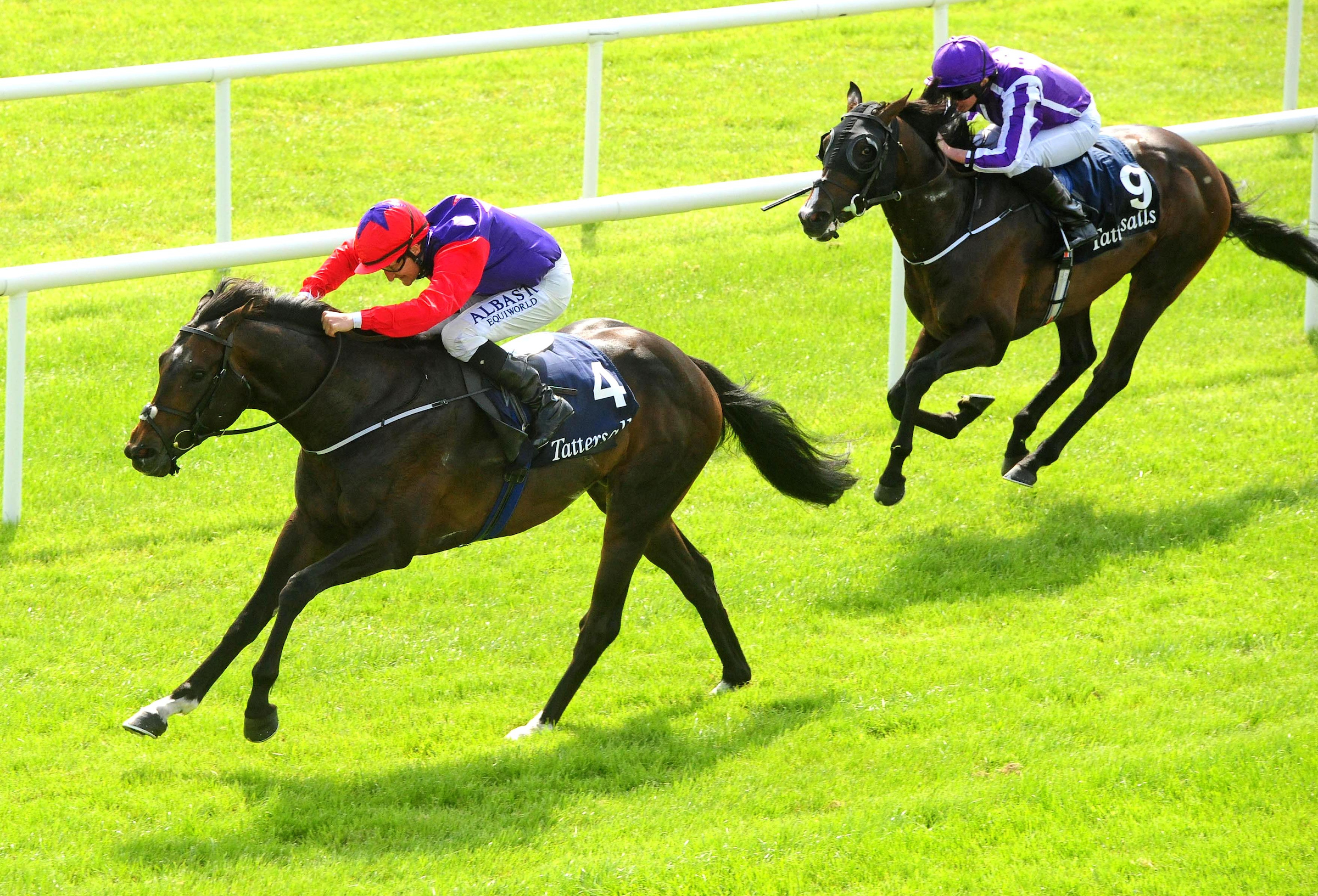 Romanised - Curragh - Shane Foley - FocusonRacing