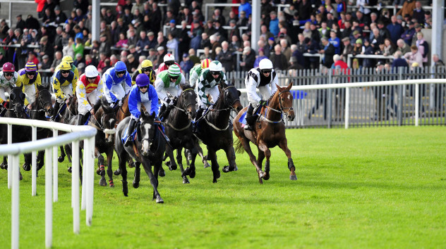 Roscommon races betting online palinsesto serie a goldbetting