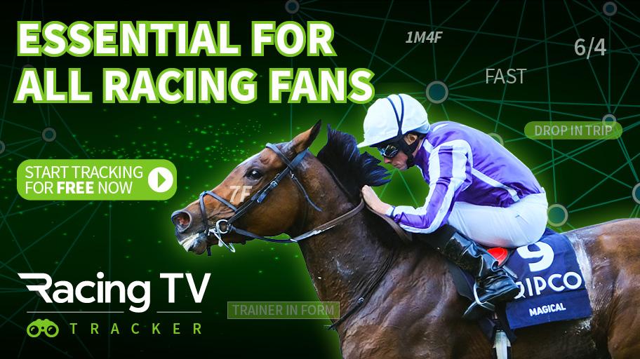 Tv horse betting betting money line favorites bar