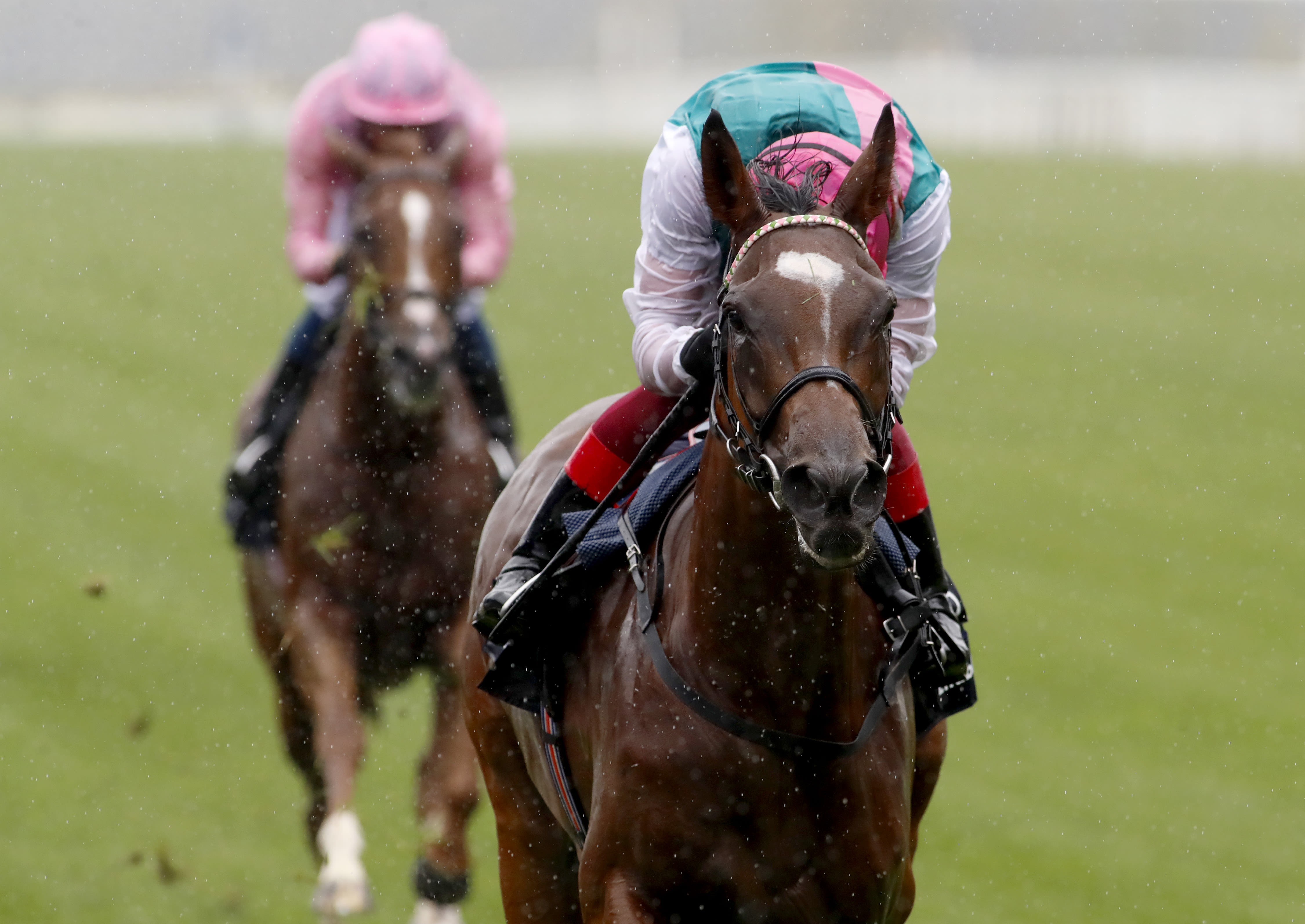 Enable powers to a third King George (Focusonracing)