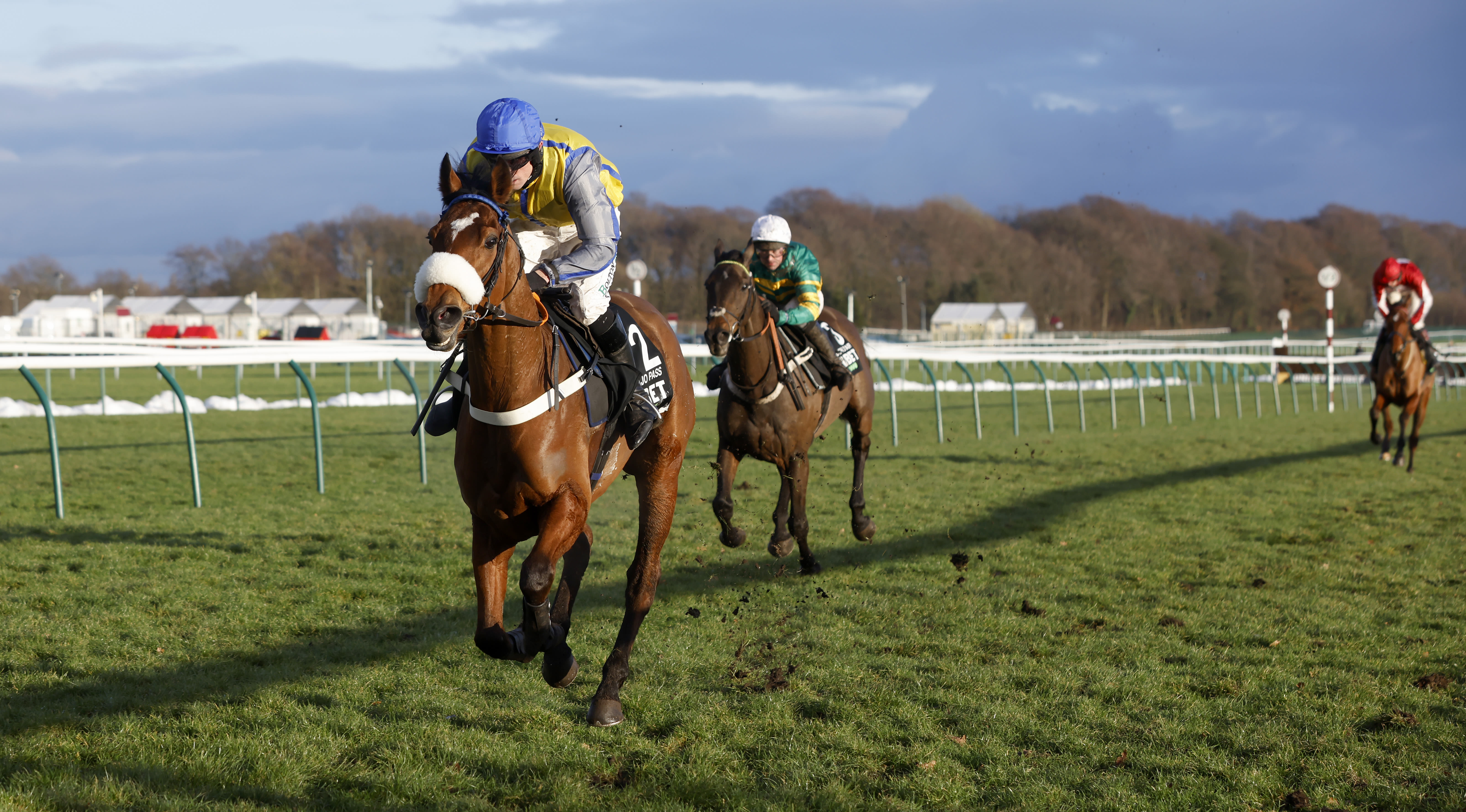 Navajo Pass is not entered in the Champion Hurdle (Pic: Focusonracing)