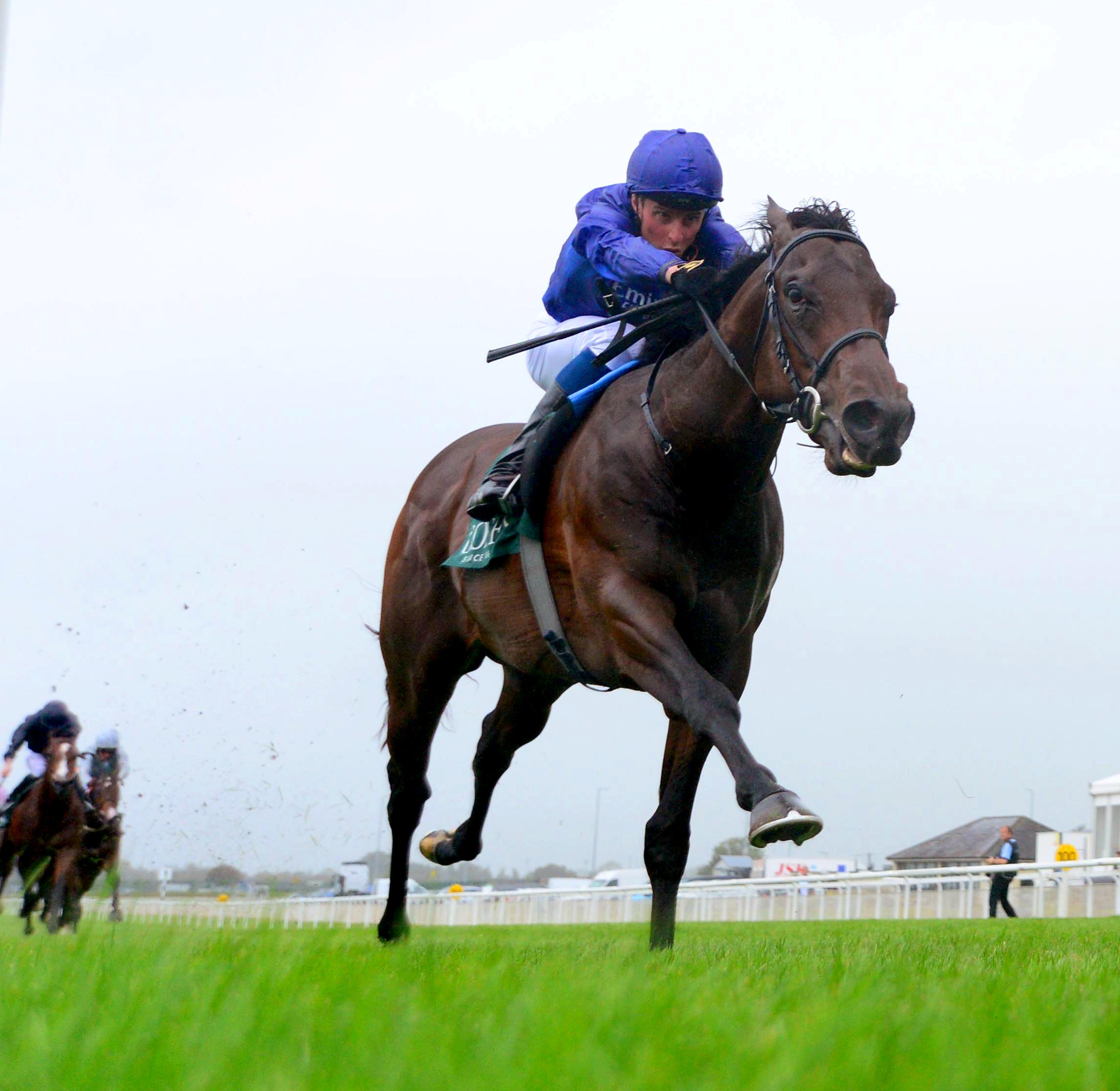 Pinatubo is out on his own at the Curragh (Focusonracing)