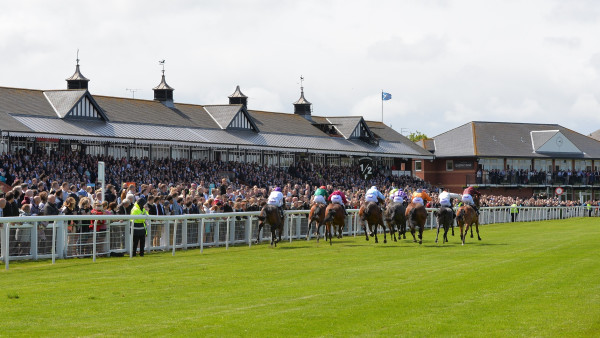 Musselburgh Races 2