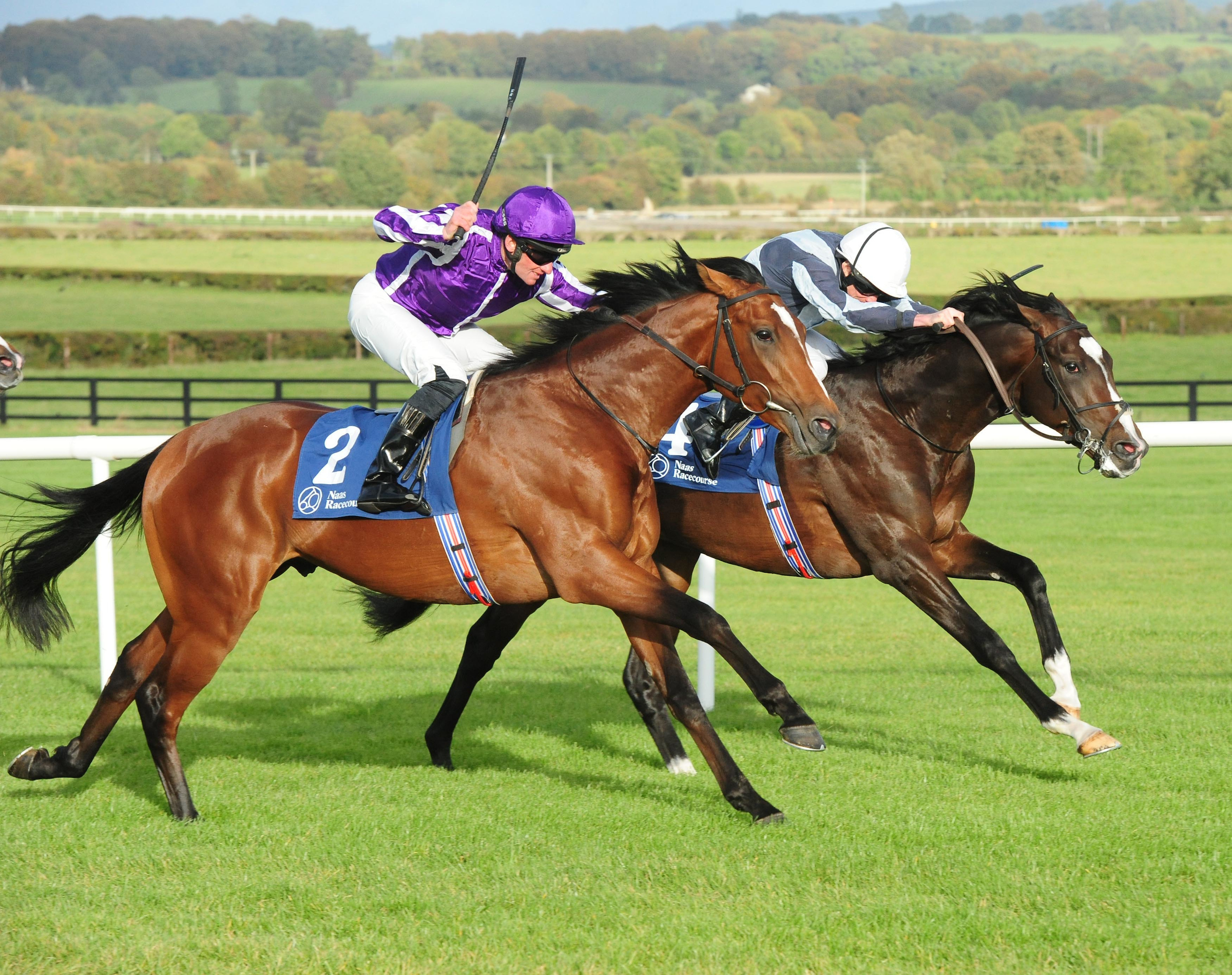 Japan in winning action at Naas