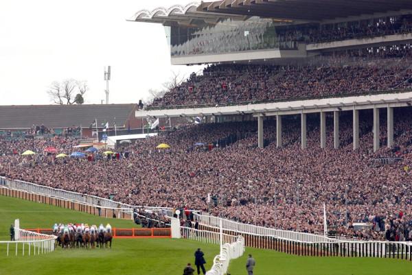 Cheltenham Festival Grandstand
