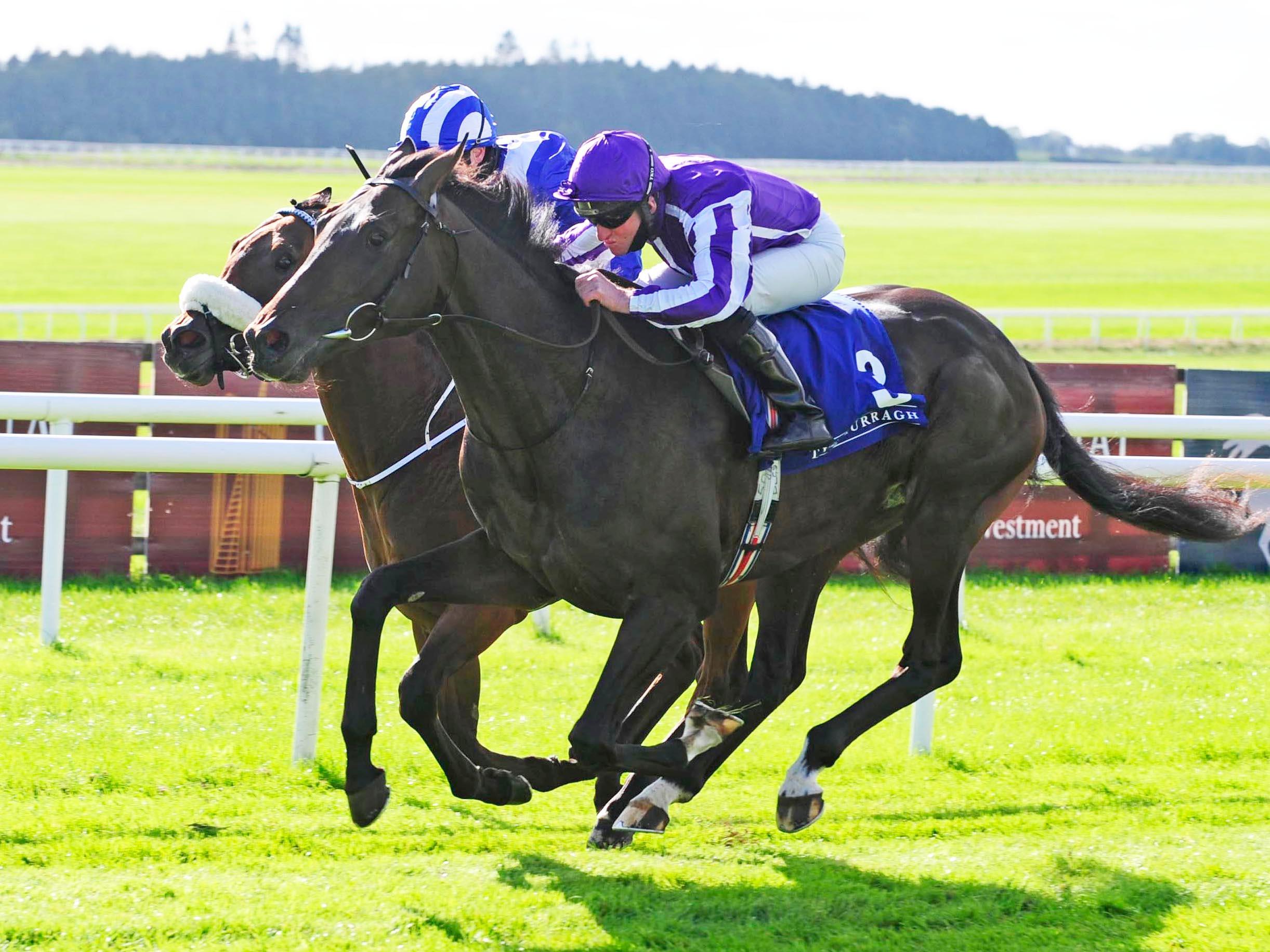 Betting odds epsom derby 2021 hyundai uk betting site offers4u