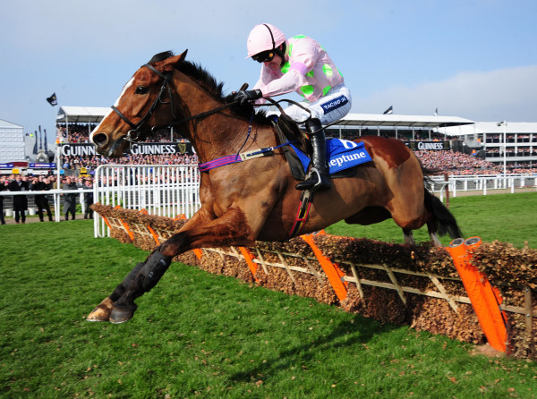 Faugheen ticked plenty of trends before his win in 2015 (PA)