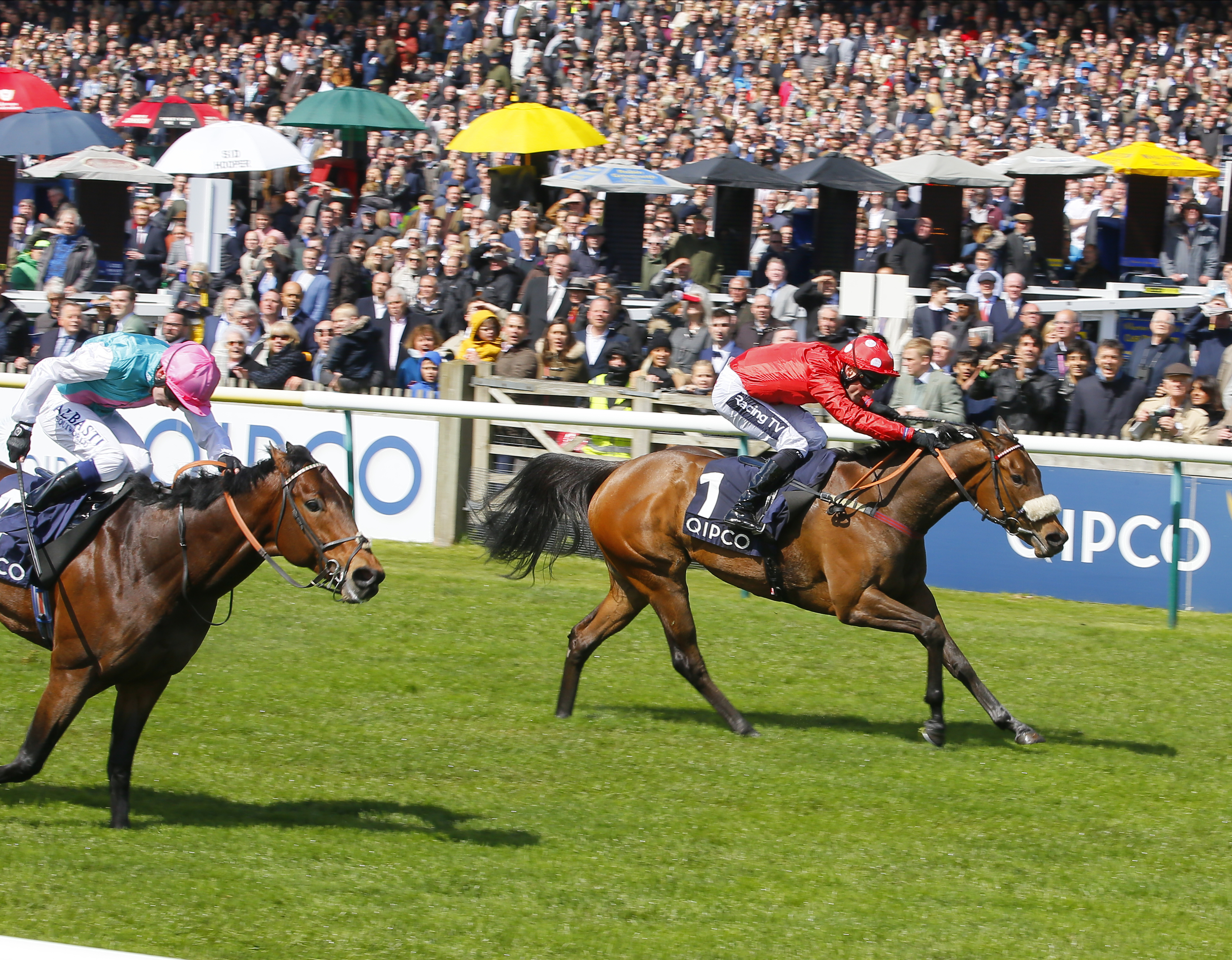 Mabs Cross wins the Palace House Stakes from Equilateral (Pic: Focus On Racing)