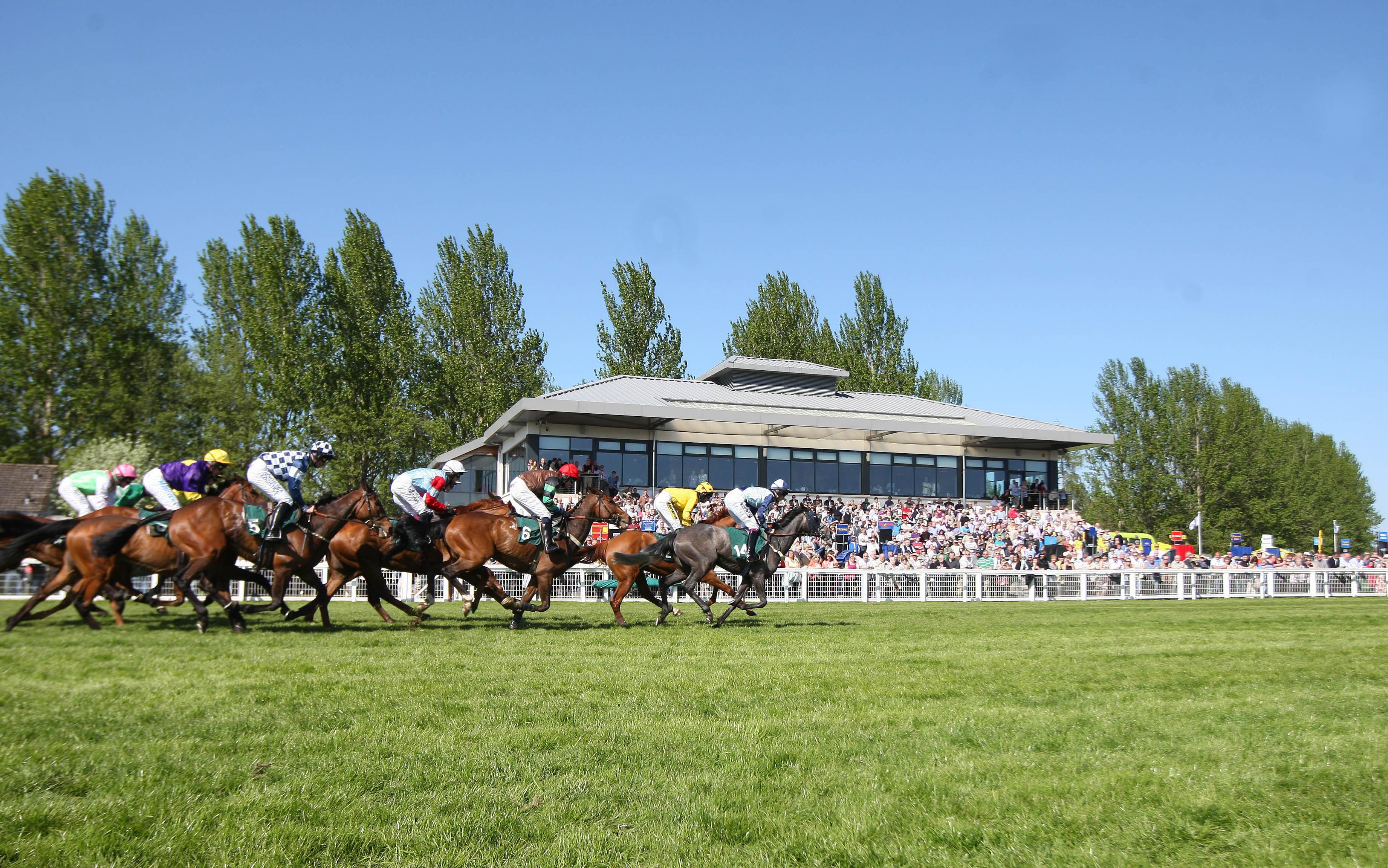 Horse Racing - Perth Festival - Day Two - Perth Racecourse