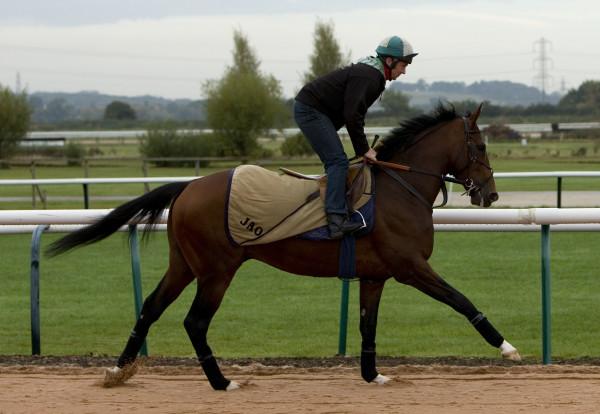 Horse Racing - Southwell Racecourse