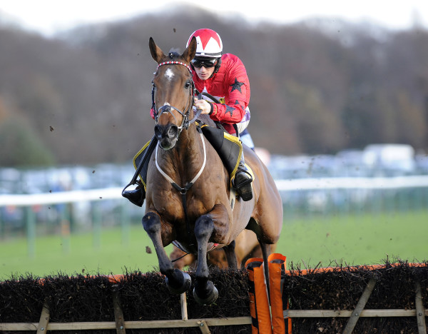 Horse Racing - Betfair Chase Day - Haydock Racecourse