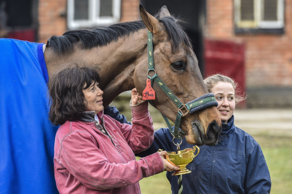 Horse Racing - 2015 Cheltenham Festival - Gold Cup Winners Parade - Old Manor Stables