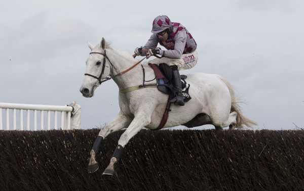 Hennessy Gold Cup Day - Newbury Racecourse
