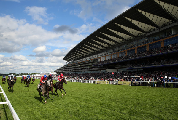 Royal Ascot 2016 - Day Two - Ascot Racecourse