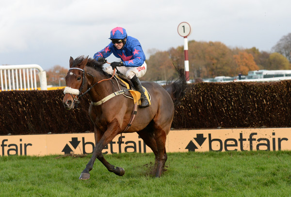 Betfair Chase Day - Haydock Racecourse