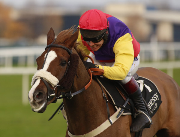 The bet365 Festival - Hennessy Gold Cup Day - Newbury Racecourse