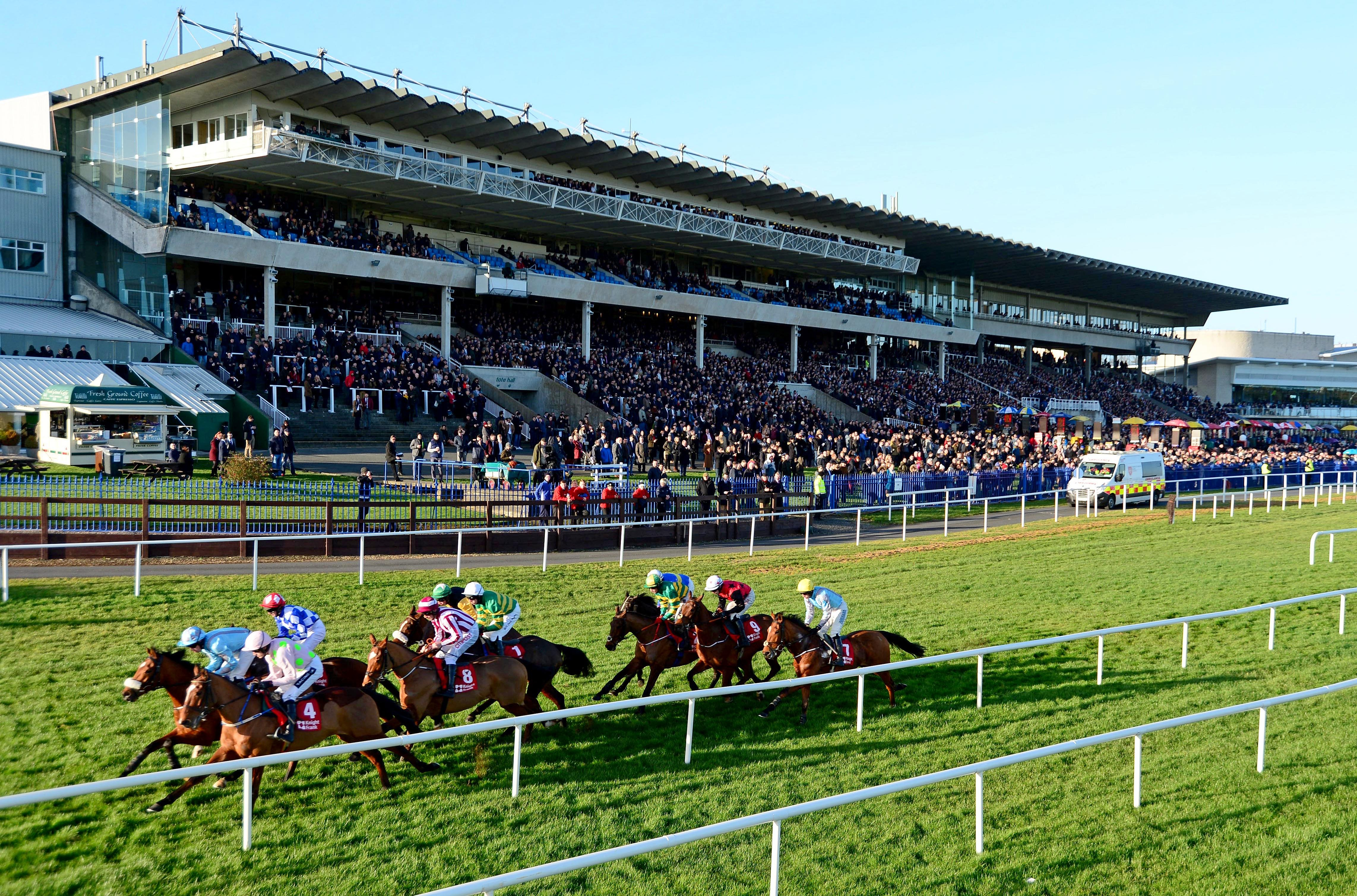 There will be racing at Leopardstown, Limerick and Down Royal in Ireland on Boxing Day