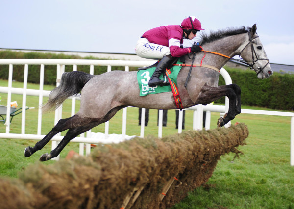 BHP Insurance Irish Champion Hurdle Day - Leopardstown Racecourse