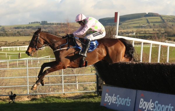 BoyleSports Tied Cottage Chase Day - Punchestown Racecourse