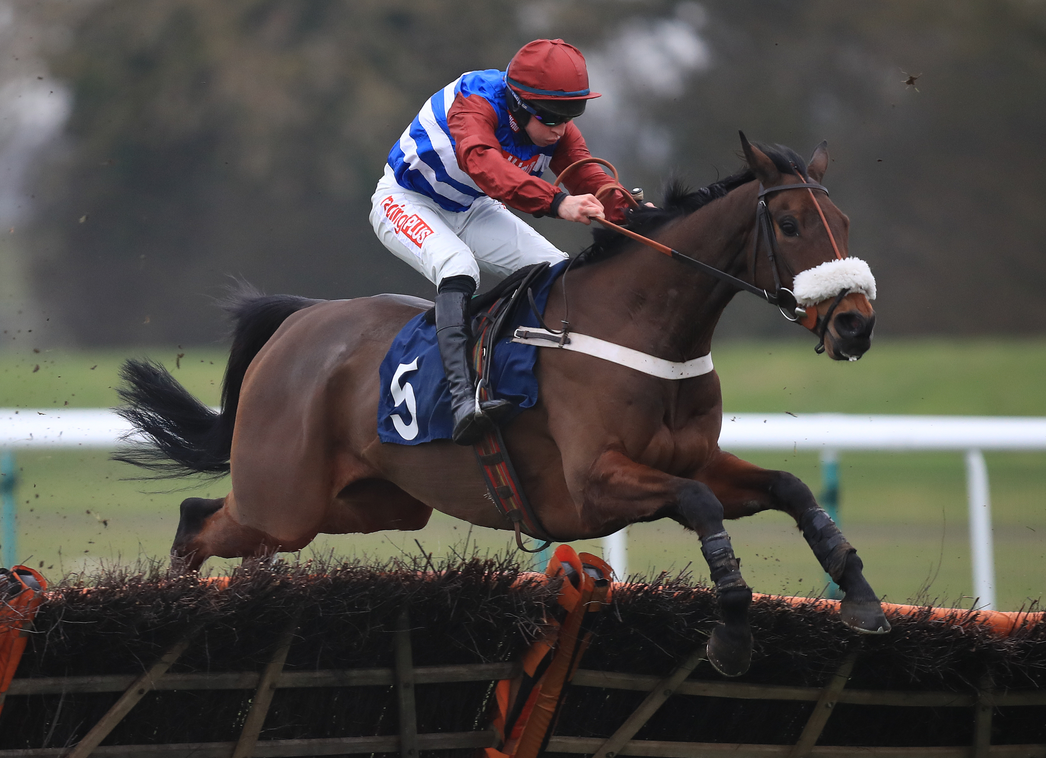Keeper Hill made a winning return at Haydock