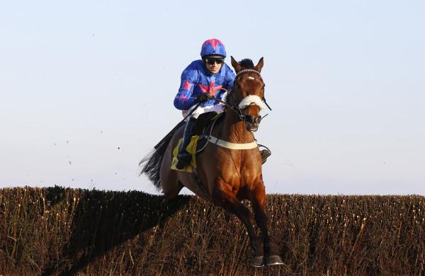 Betfair Chase Raceday - Ascot Races