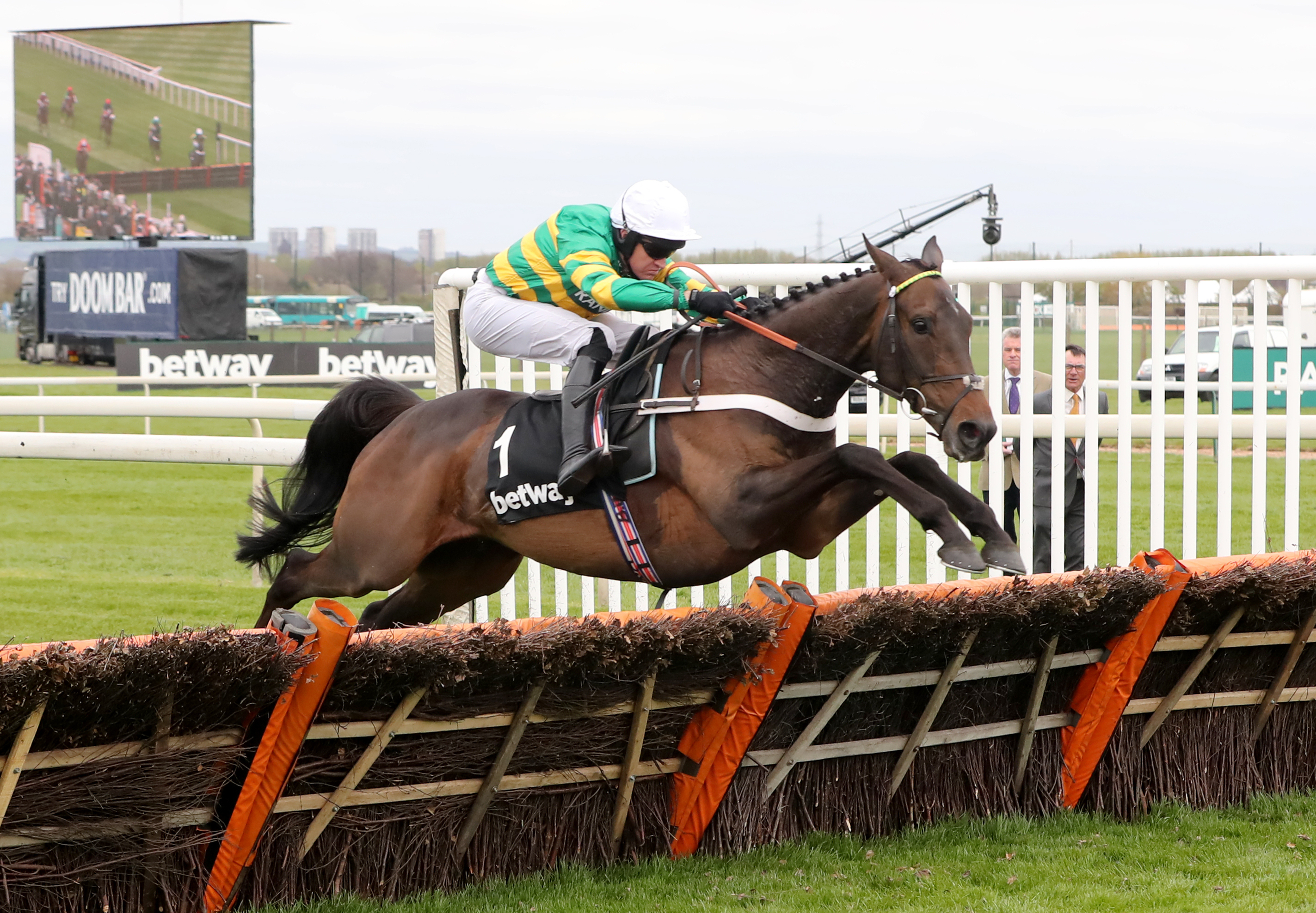Buveur D'Air impressed me at Newcastle on Saturday