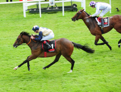 full)Beckford Curragh 111