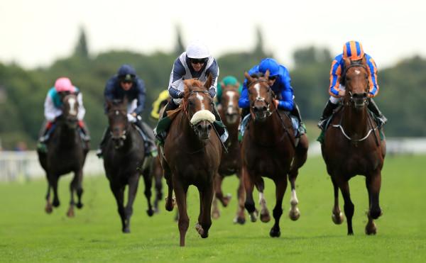 Ulysees - Juddmonte International Day - York Racecourse