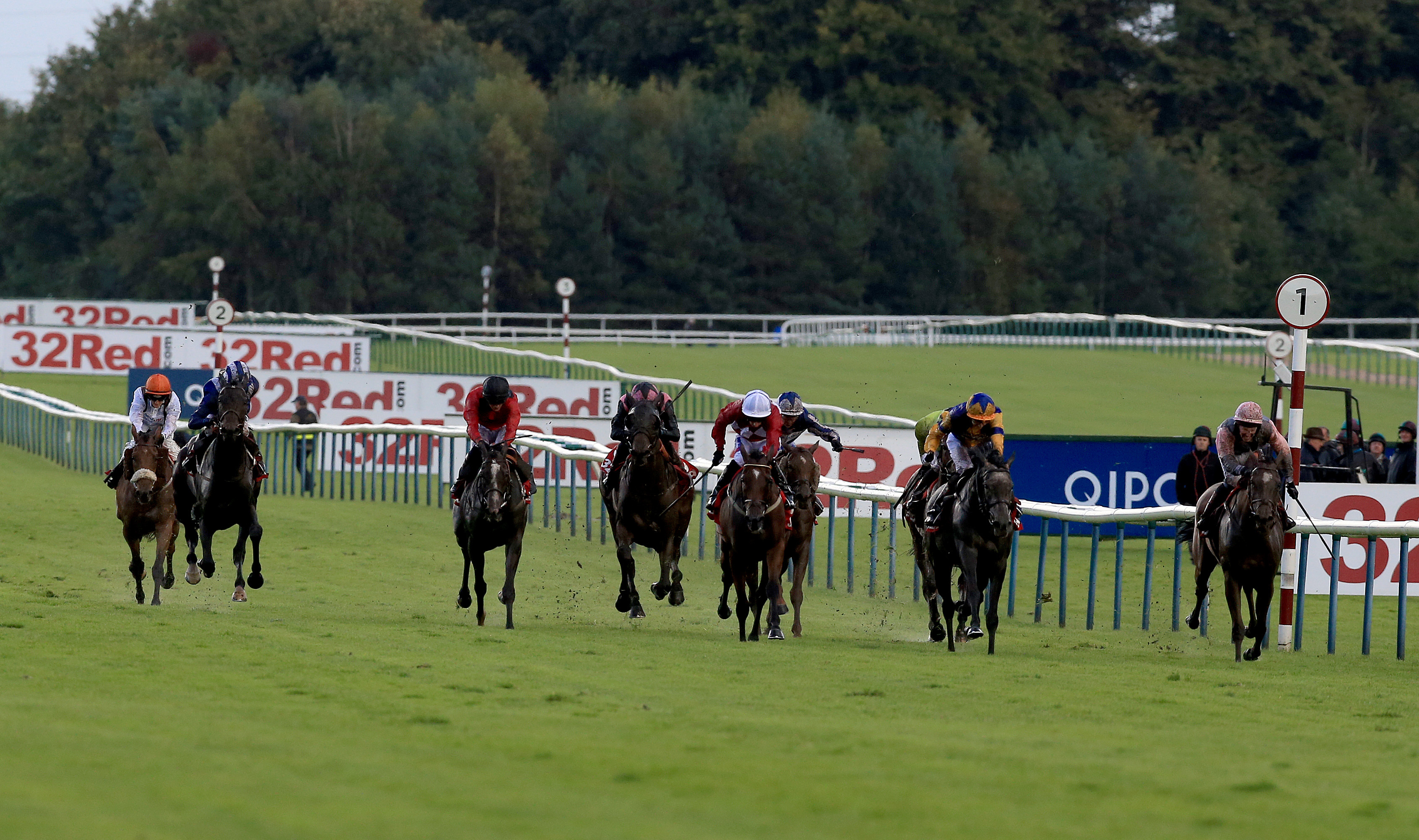32Red Sprint Cup Day - Haydock Park Racecourse