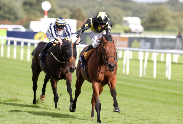 William Hill St. Leger Festival - Day One - Doncaster Racecourse