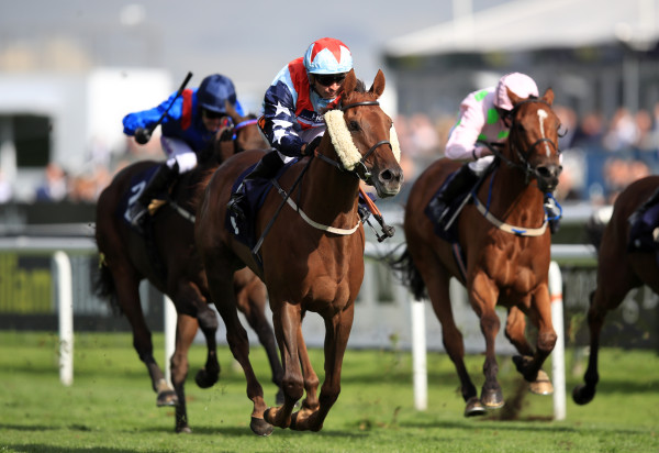 William Hill St. Leger Festival - Day Three - Doncaster Racecourse