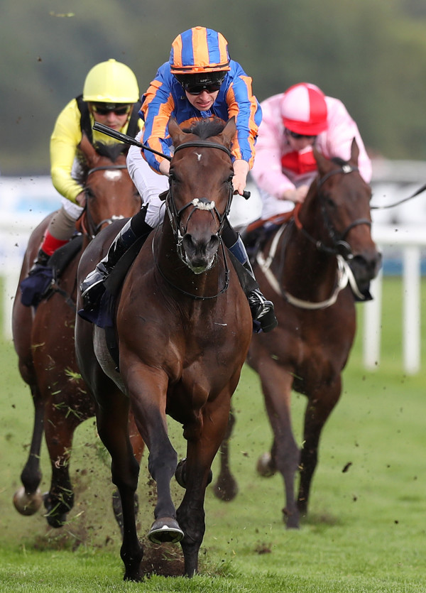 William Hill St. Leger Festival - Day Four - Doncaster Racecourse