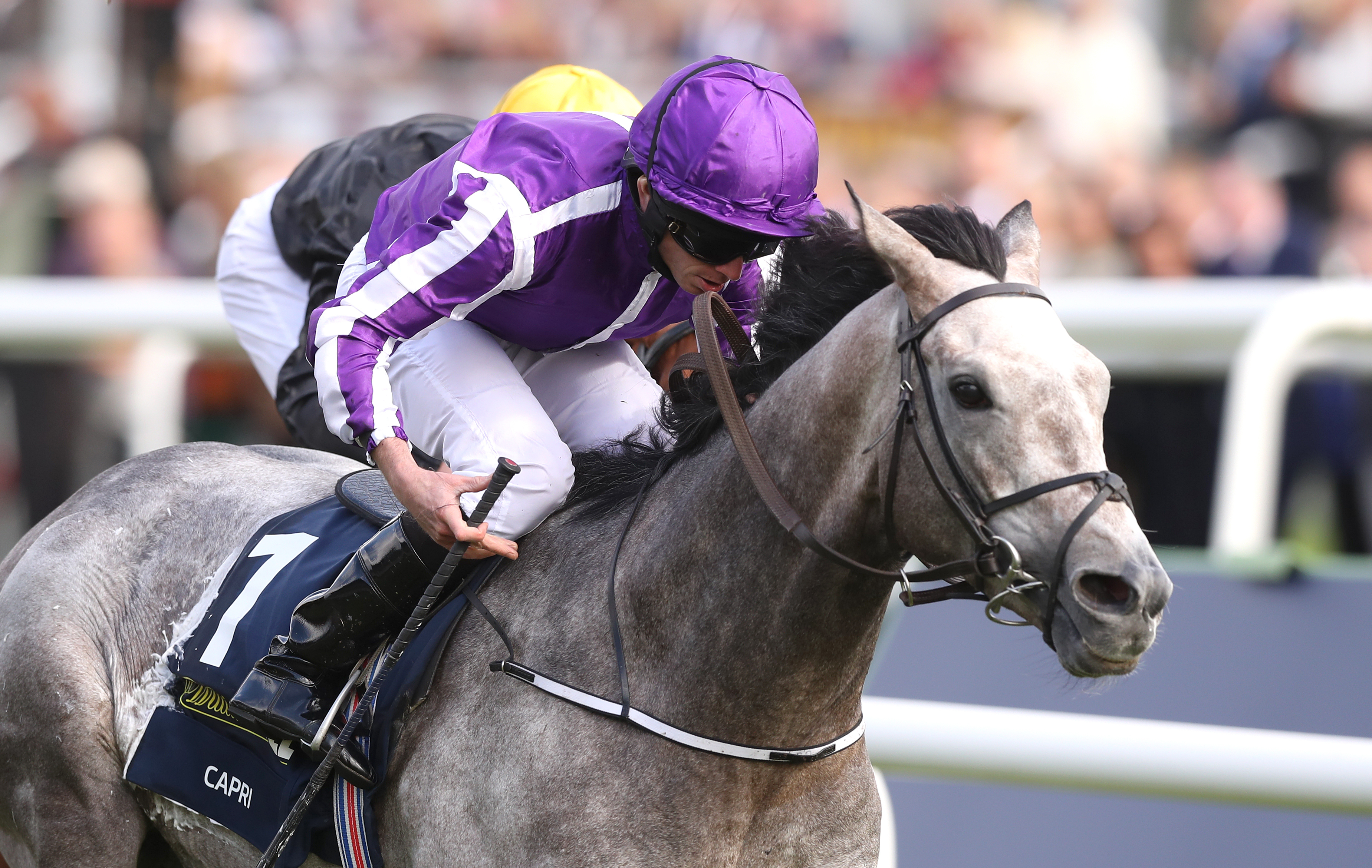 Capri provided Moore with his first StLeger triumph. (PA)