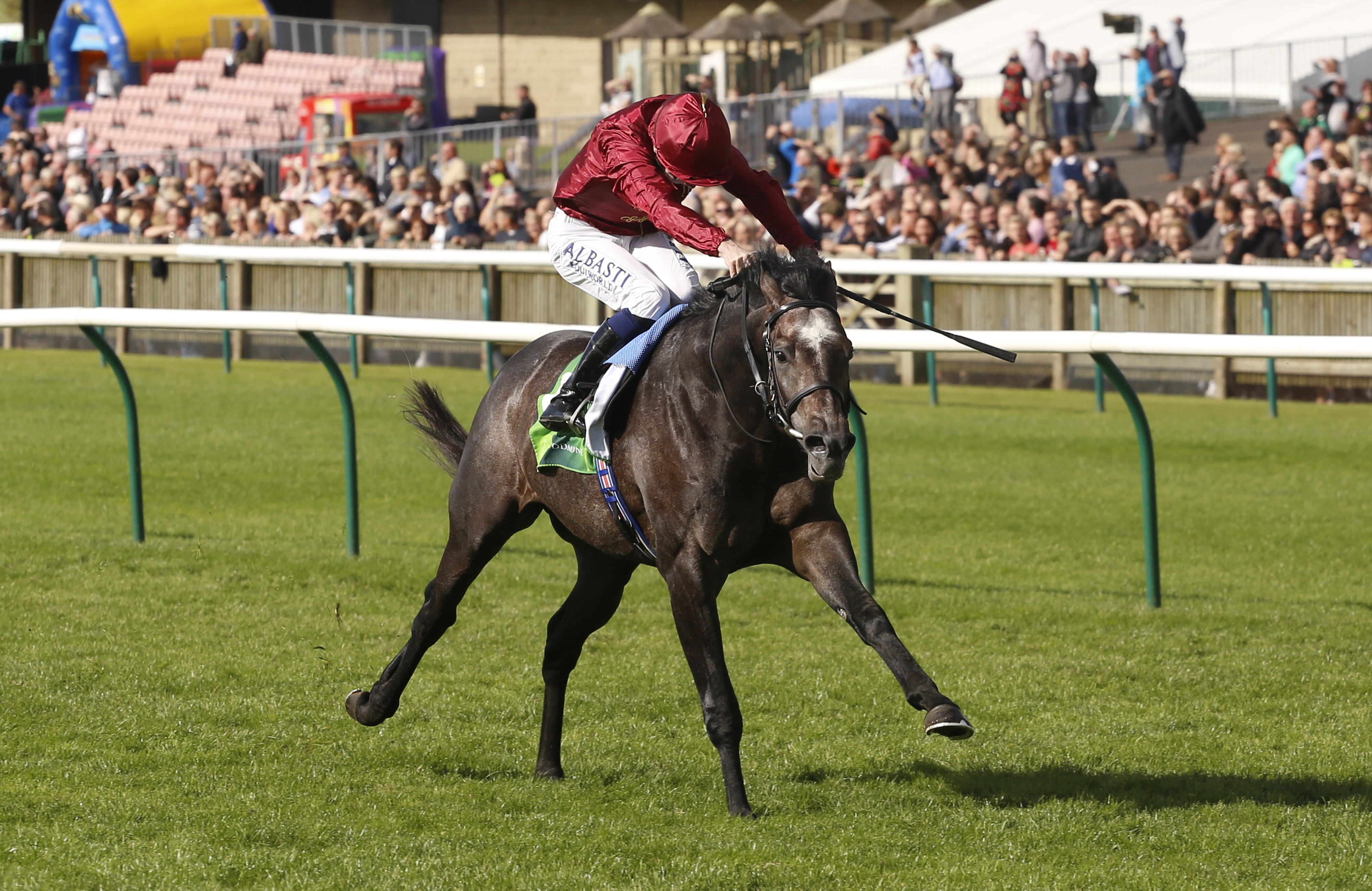 Roaring Lion will be hard to beat at Ascot