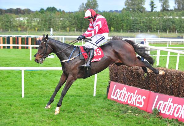 Total Recall Limerick 2
