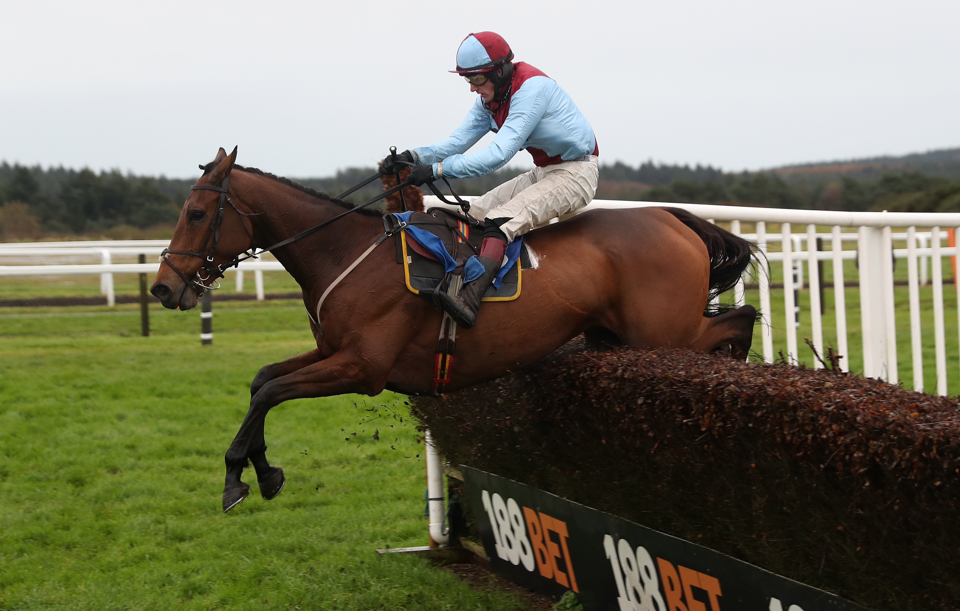 Ballyoptic has already won at Chepstow and Wetherby this season (PA)