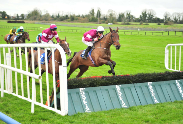Mind's Eye Fairyhouse 2